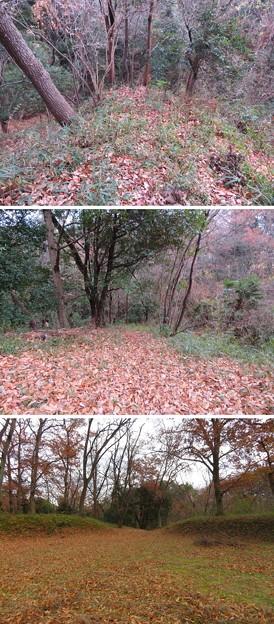 菅谷館(嵐山町)生門跡