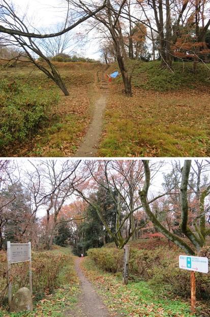 菅谷館(嵐山町)南郭