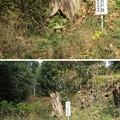 滝の城(所沢市)霧吹きの井戸