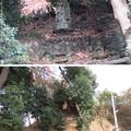 滝の城(所沢市)不動様