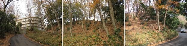 滝の城(所沢市)袖郭・物見櫓跡