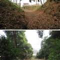滝の城(所沢市)二重堀跡