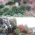 滝の城(所沢市)土塁・物見櫓跡