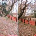 滝の城(所沢市)馬出郭
