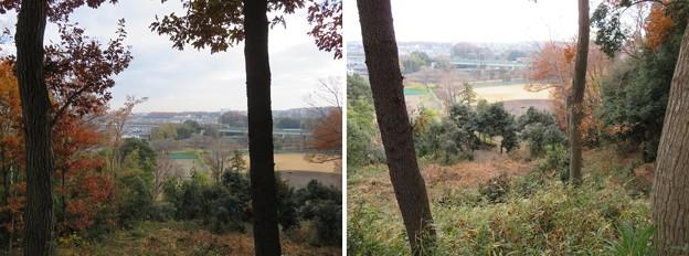 滝の城(所沢市)三郭より東南