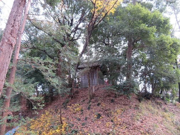 滝の城(所沢市)本郭