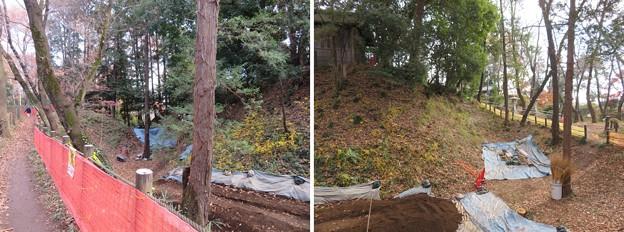 滝の城(所沢市)内堀