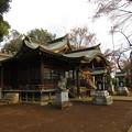 滝の城(所沢市)城山神社