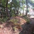 滝の城(所沢市)土塁