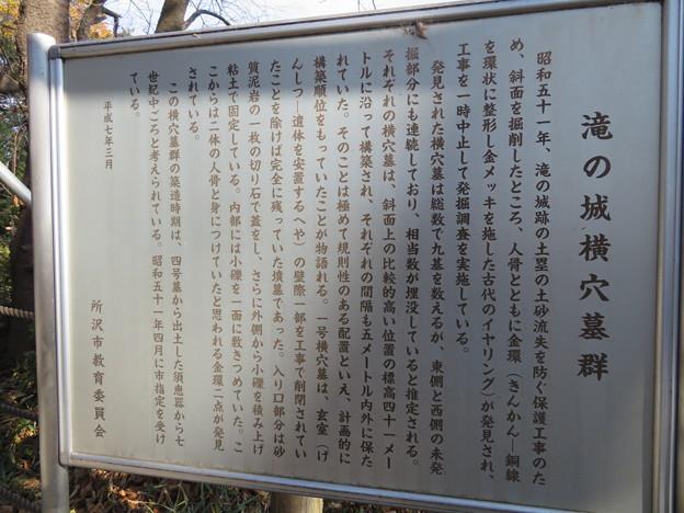 Photos: 滝の城(所沢市)横穴墓群説明板