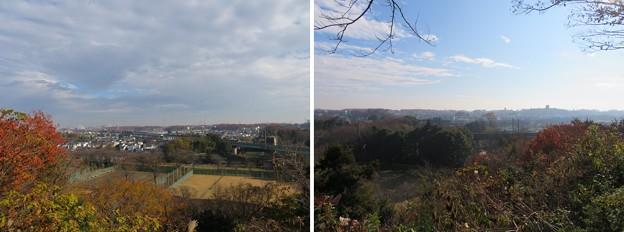 滝の城(所沢市)本郭より東南