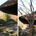 Photos: 平林寺(新座市)仏殿・中門