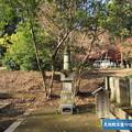 Photos: 平林寺(新座市)見性院供養塔
