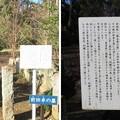 平林寺(新座市)前田卓墓