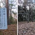 平林寺(新座市)業平塚
