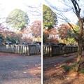 Photos: 平林寺(新座市)大河内松平家廟所