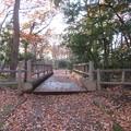 岡城(朝霞市)木橋跡