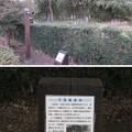 難波田城(富士見市)十玉院跡