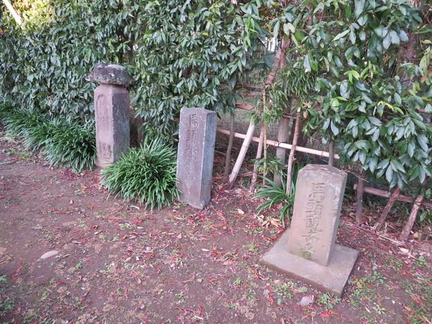 Photos: 難波田城(富士見市)馬頭観音・庚申塔