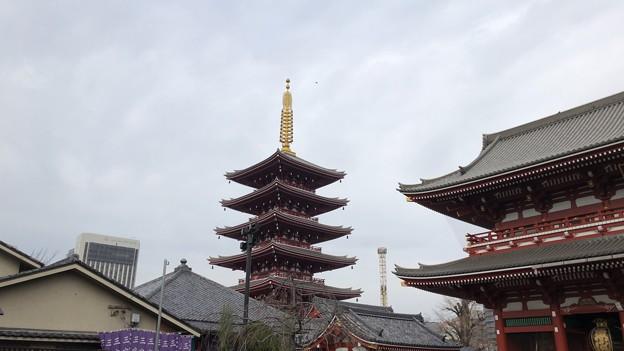 浅草寺五重塔(台東区)