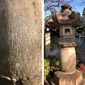 徳蔵寺 石灯籠(東村山市)