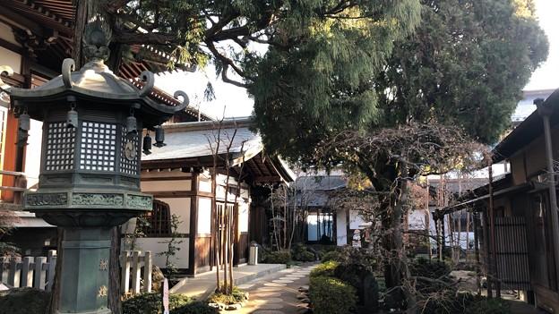 徳蔵寺 境内 ・庫裡(東村山市)