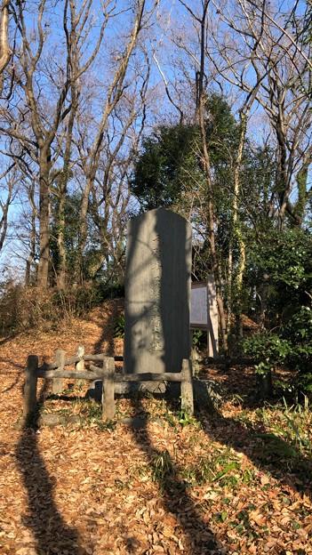 Photos: 久米川古戦場(埼玉県所沢市)元弘青石塔婆所在趾