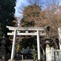 八坂神社(東村山市)石鳥居