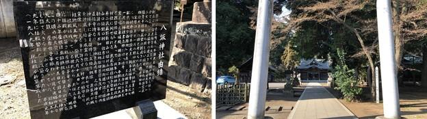 八坂神社(東村山市)