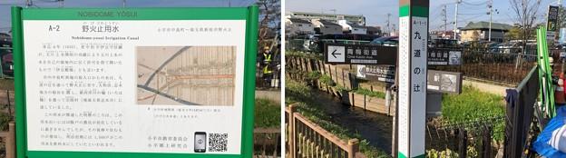 Photos: 九道の辻(小平市)