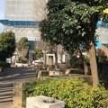 九道の辻(東村山市)野火止広場
