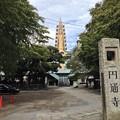 Photos: 13.10.09.円通寺(荒川区)