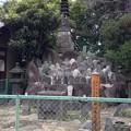 Photos: 円通寺(荒川区)七重層塔 ・板碑4基
