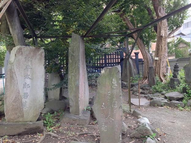 円通寺(荒川区)松平太郎墓