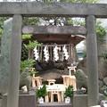 Photos: 11.02.19.素盞雄神社(南千住6丁目)浅間神社・瑞光石