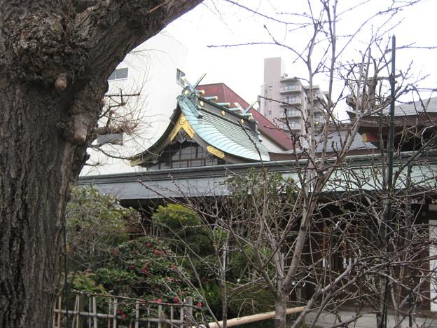 素盞雄神社(南千住6丁目)本殿
