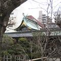 Photos: 素盞雄神社(南千住6丁目)本殿