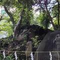 Photos: 素盞雄神社(南千住6丁目)富士塚