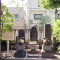Photos: 素盞雄神社(南千住6丁目)庚申塔群