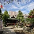 Photos: 素盞雄神社(南千住6丁目)境内