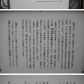 Photos: 11.03.22.道灌山(荒川区西日暮里3 ・4丁目)
