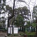 Photos: 道灌山(荒川区西日暮里3 ・4丁目)