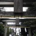 Photos: 11.03.22.諏訪神社(荒川区西日暮里3丁目)