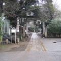 Photos: 諏訪神社(荒川区西日暮里3丁目)