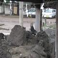 11.03.22.諏訪神社(荒川区西日暮里3丁目)手水舎