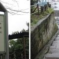 Photos: 11.03.22.諏訪神社(荒川区西日暮里3丁目)地蔵坂
