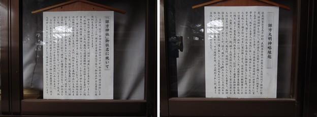 Photos: 12.03.02.諏訪神社(西日暮里)