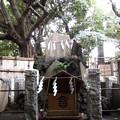 Photos: 諏訪神社(西日暮里)御嶽社