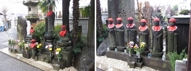 Photos: 11.03.22.浄光寺(西日暮里)