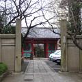 Photos: 12.03.02.養福寺仁王門(西日暮里)